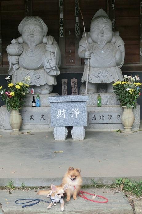 栗吉&小豆CIMG4973