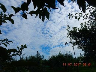 s-015_20170711182418e5a.jpg