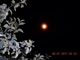 s-022_20170708204137ef0.jpg