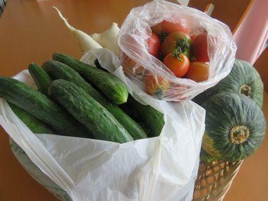 IMG_0728野菜