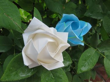 IMG_1140折り紙薔薇