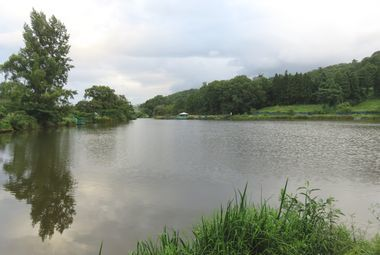 IMG_2604浜津ケ池