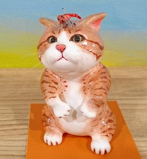 赤トンボ猫