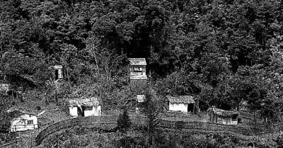 o8GU6YP1密林にできた疑似ベトナム