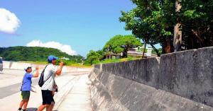 Wiswp4mW阿嘉島でケラマジカを観察