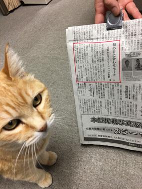 東愛知新聞 母の日 ミルク 豊川 御津 花屋 花夢