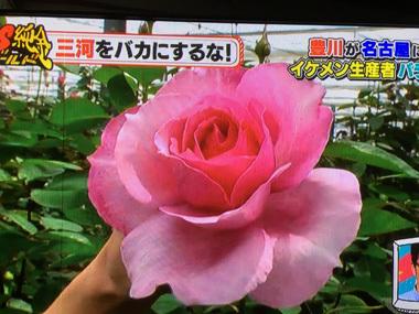 PSゴールド 高田純次 オリラジ 花男子 バラ王子 豊川 花屋 花夢