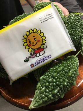 ゴーヤ 緑のカーテン 地球温暖化 豊川 御津 花屋 花夢