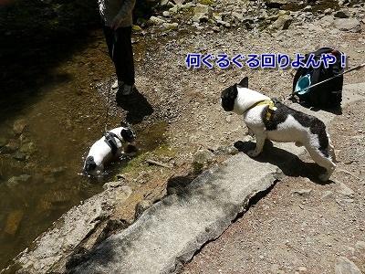 生野銀山5 (8)
