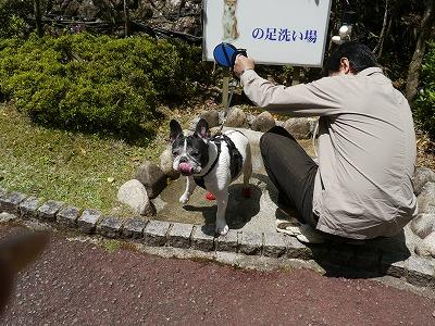 生野銀山8 (1)