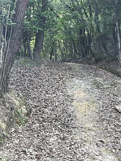 お墓参り (2)