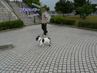 なぎさ公園 (2)