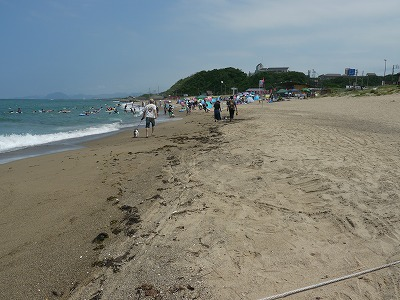 白兎海岸6 (1)