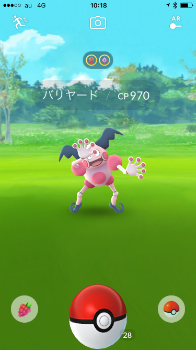 new_写真 2017-08-09 10 18 23