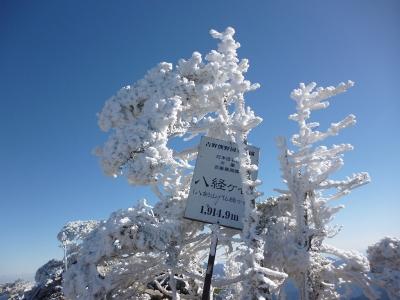 弥山・八経の樹氷♪
