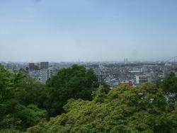 2017-05-07 野崎まいり (25)