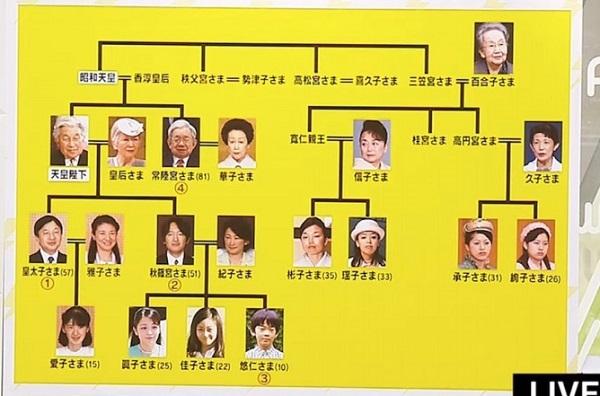 現在の皇族で皇位継承を持つのは4人だけだ。第1位が皇太子殿下、2位が秋篠宮さま、3位が悠仁さま、4位が常陸宮さまだ。30代以下の皇族が現在8人いるが、悠仁さま以外は全て女性だ。