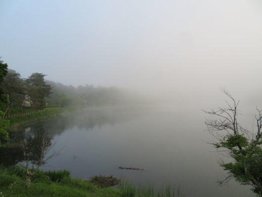 霧 大座法師池