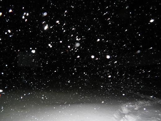 12月8日(金) いいづなリゾート好きー場