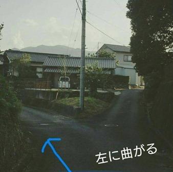 80720173a.jpg