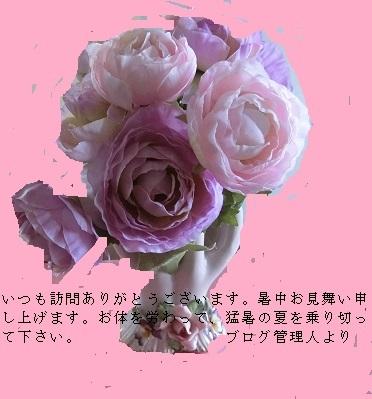 CIMG5493.jpg