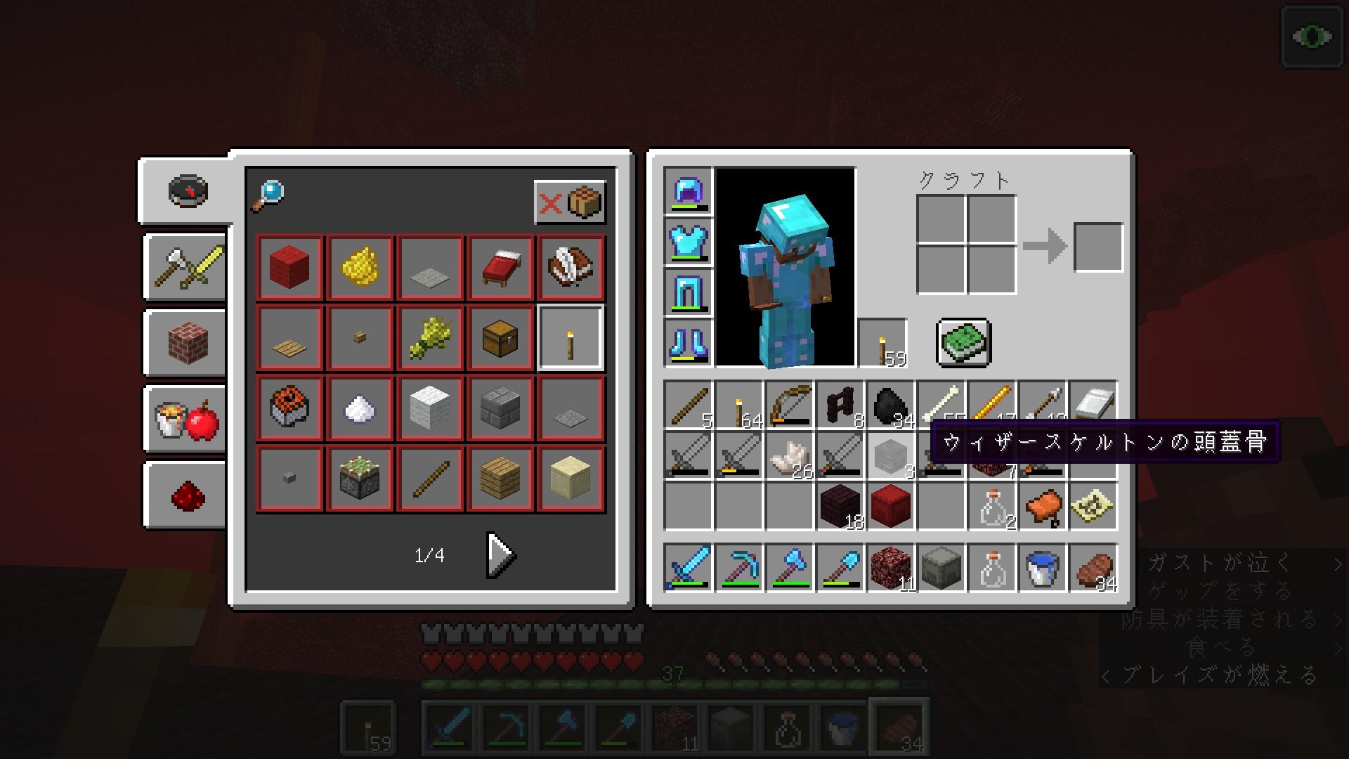 minecraft112_31.jpg