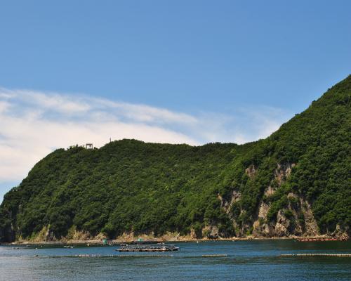 須崎海岸1