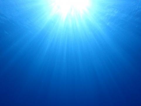 水中から見た太陽