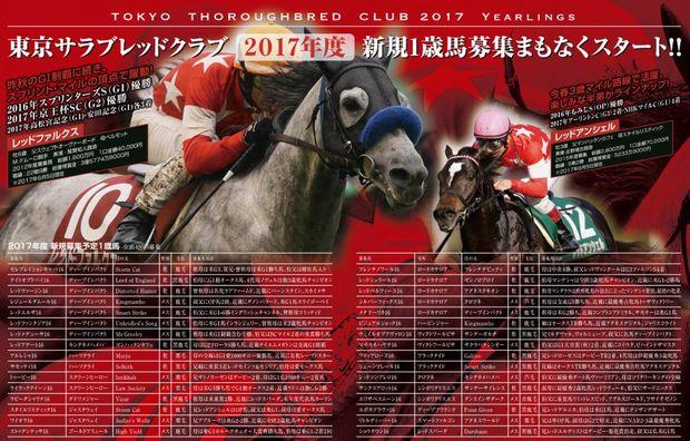 東京TC2017年募集馬リスト