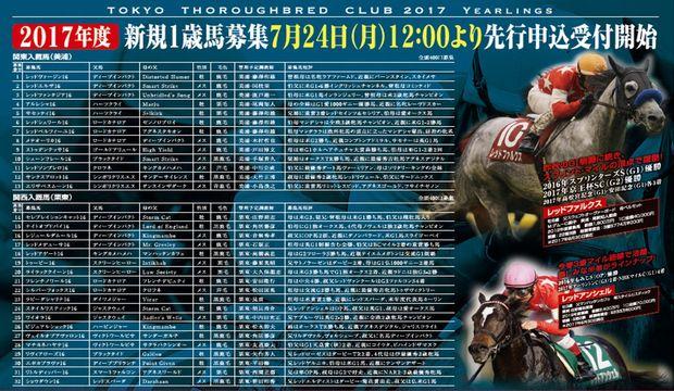 東京TC2017年募集馬