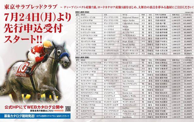 東京TC2017年募集馬リスト価格あり