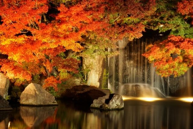 秋といえば 紅葉