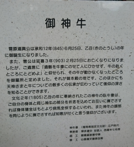 DSC_8556.jpg