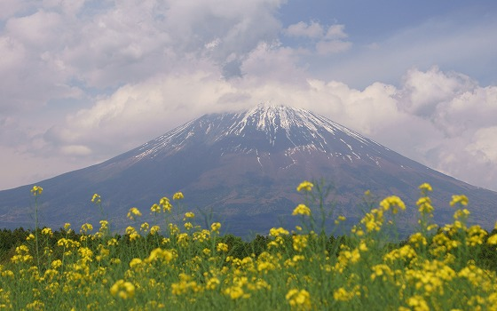1705111438富士山