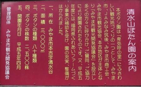 中山藤・清水白踊子 478