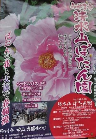 中山藤・清水白踊子 393