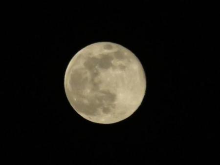 星野満月 229