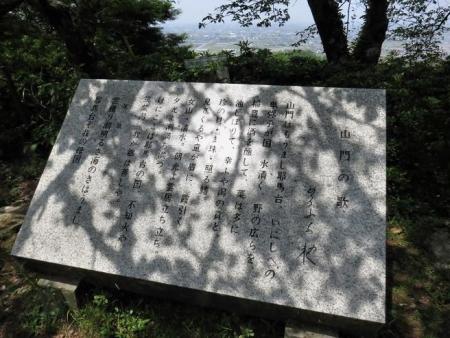 中山藤・清水白踊子 301