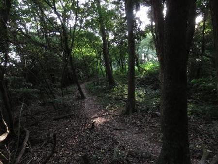 燕朝駆け清水山 072