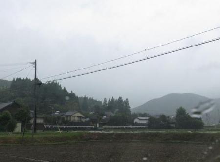梅雨と燕 005