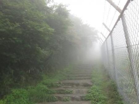 脊振山蝶山頂 093