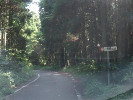 キツネ八幡岳の 010