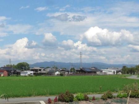 昼は入道雲運動公園 002