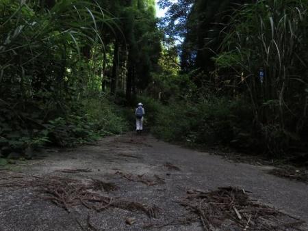 カラ迫岳に登る 023