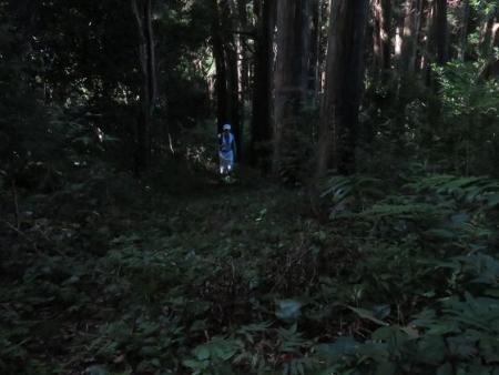 カラ迫岳に登る 046
