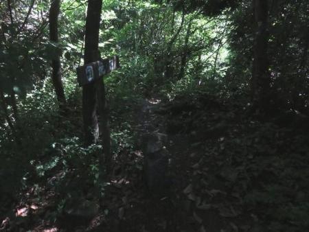 カラ迫岳に登る 087