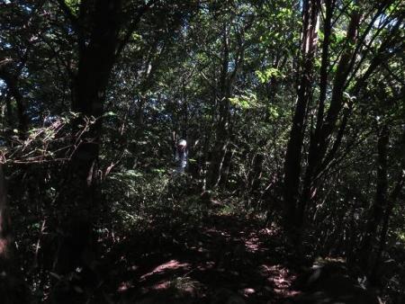 カラ迫岳に登る 100