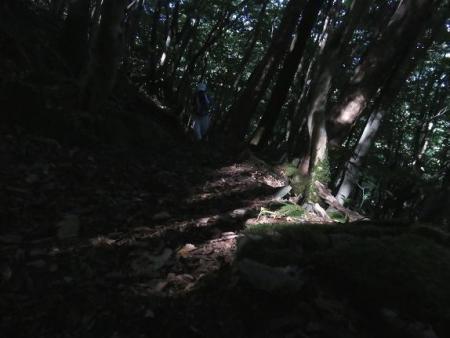 カラ迫岳に登る 096