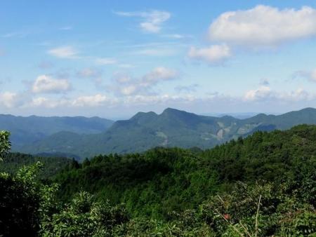 カラ迫岳に登る 113