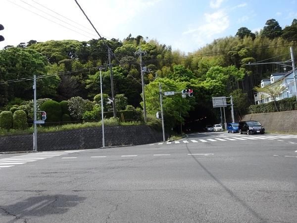 20170504蓮沼へ② (8)